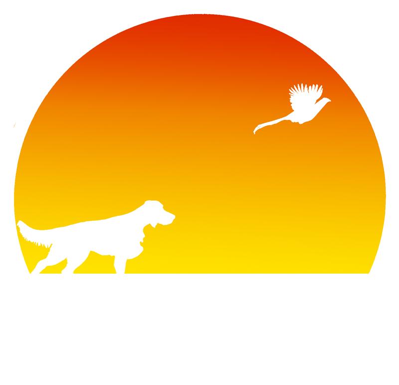 Markover Logo